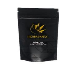 Hierba Santa Mimosa